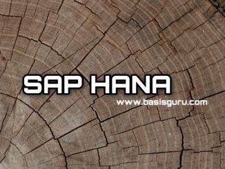 HANA www.basisguru.com