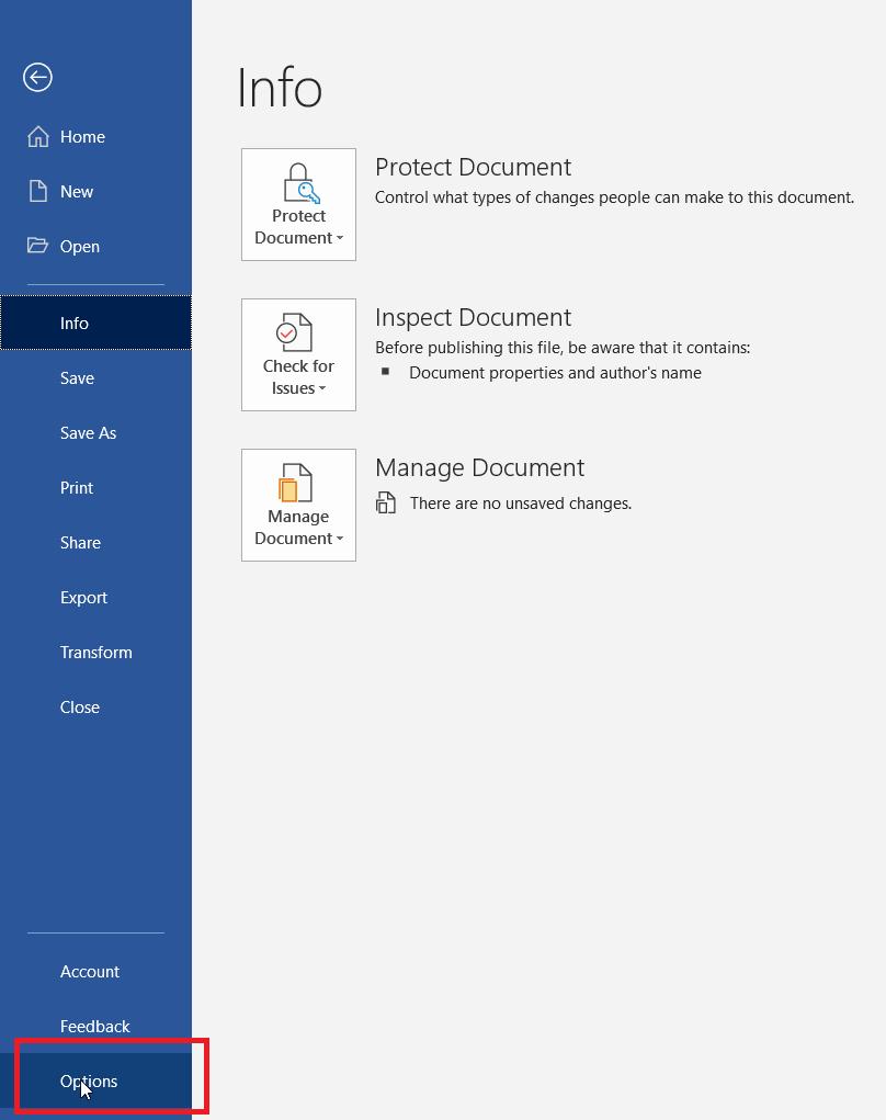 Microsoft Excel Word Options_ SAPGUI