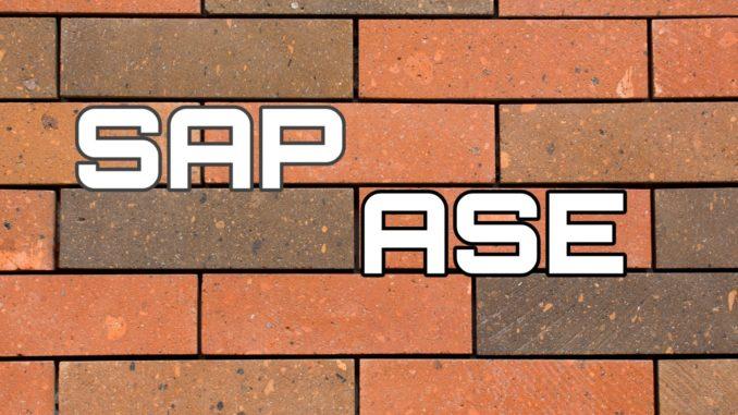 SAP ASE www.basisguru.com