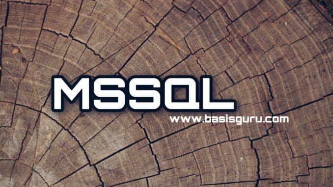MSSQL_www.basisguru.com