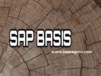 www.basisguru.com