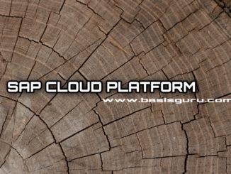 SCP_www.basisguru.com