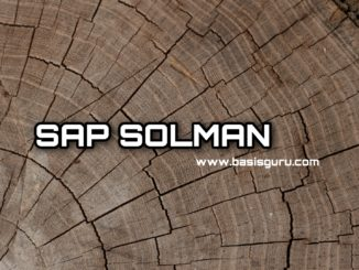 Solman_www.basisguru.com